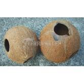 Domek kokosowy 1/1 orzecha, nieszczotkowany
