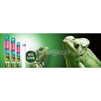 Świetlówka UVB 6% T5 Forest ARCADIA
